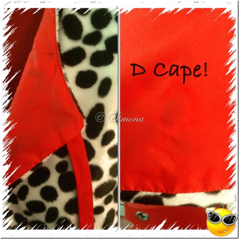 cape detail